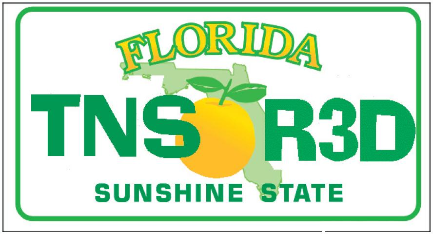 Florida Teen Read Logo